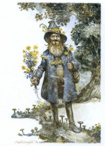 Tom Bombadil - Larry MacDougall